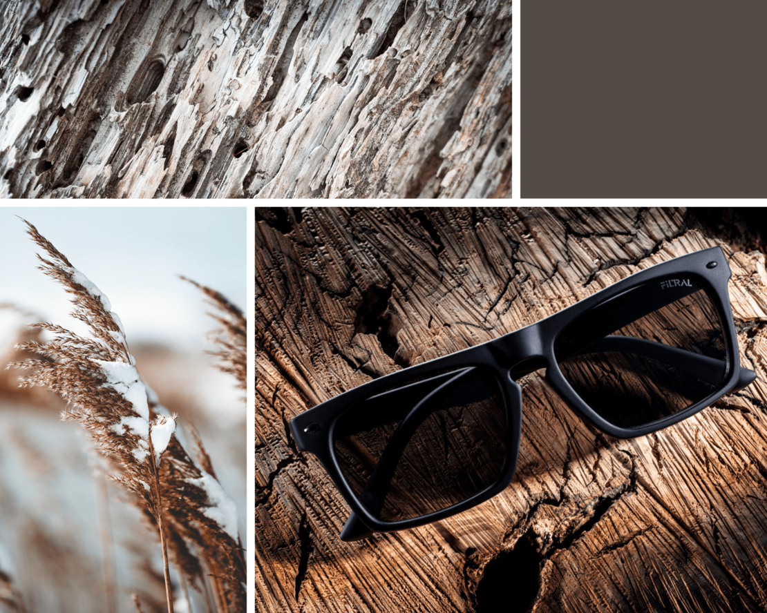 filtral sunglasses inspiration F3080721