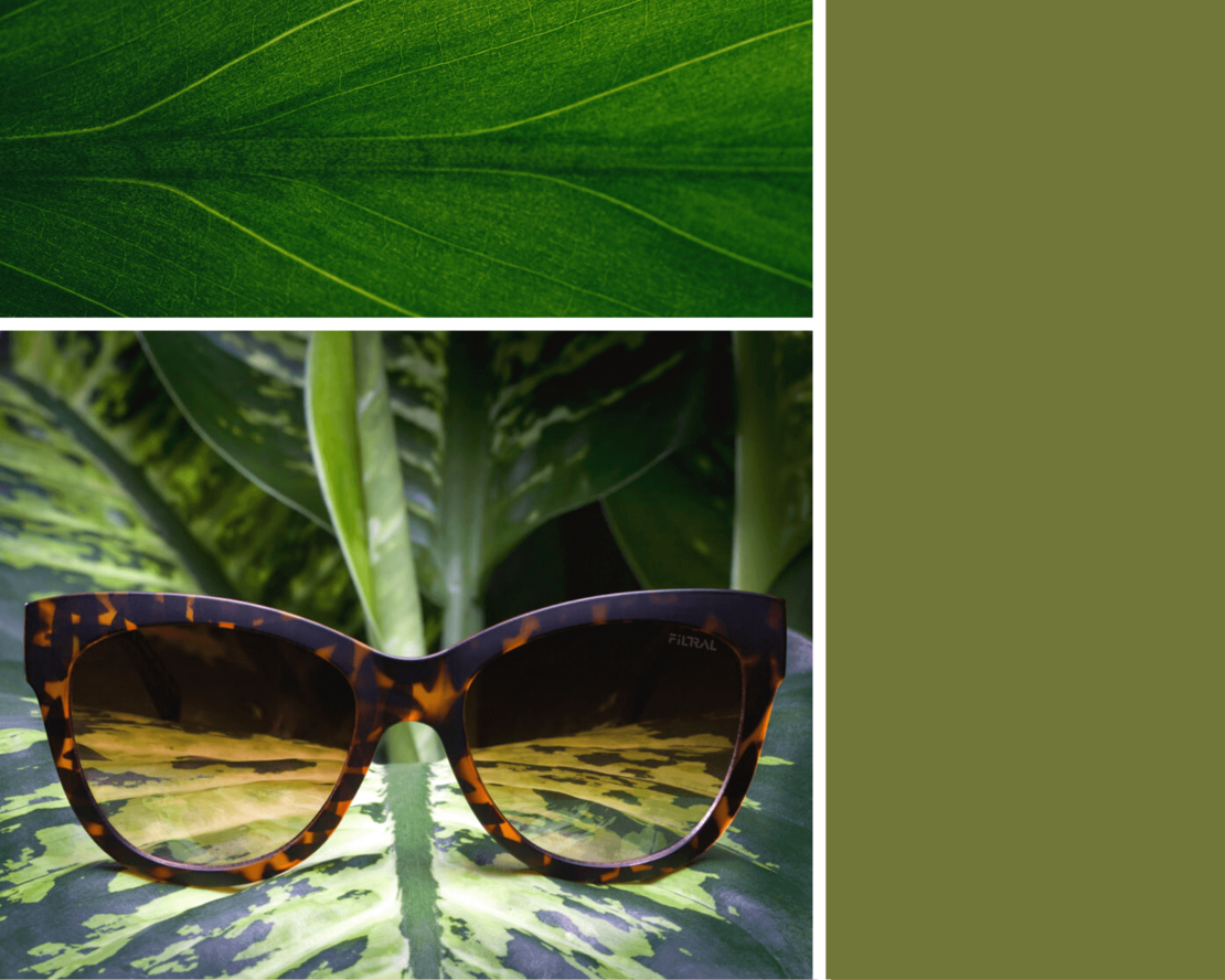 sunglasses inspiration spring F3075321