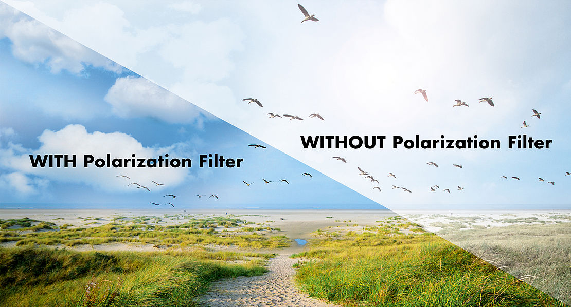 graphic, difference polarized, non-polarized lenses