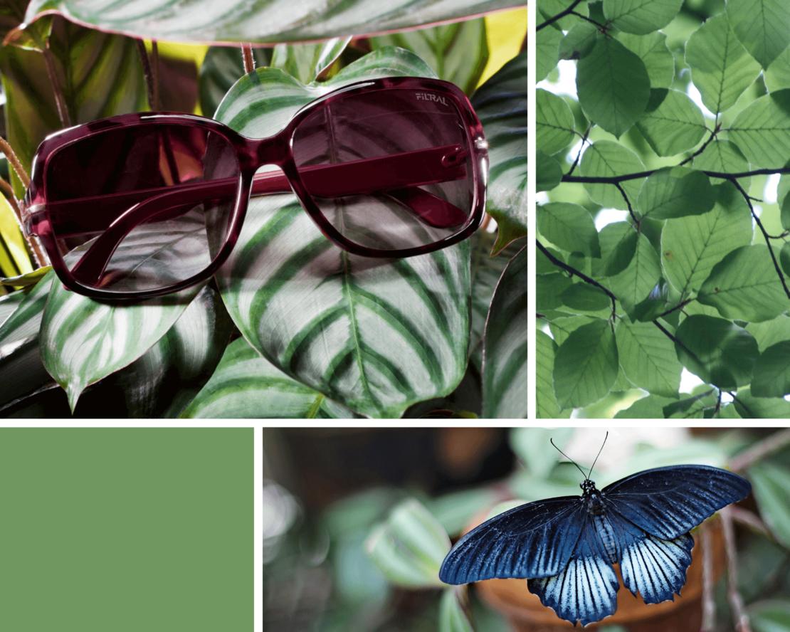 sunglasses inspiration spring F3071521