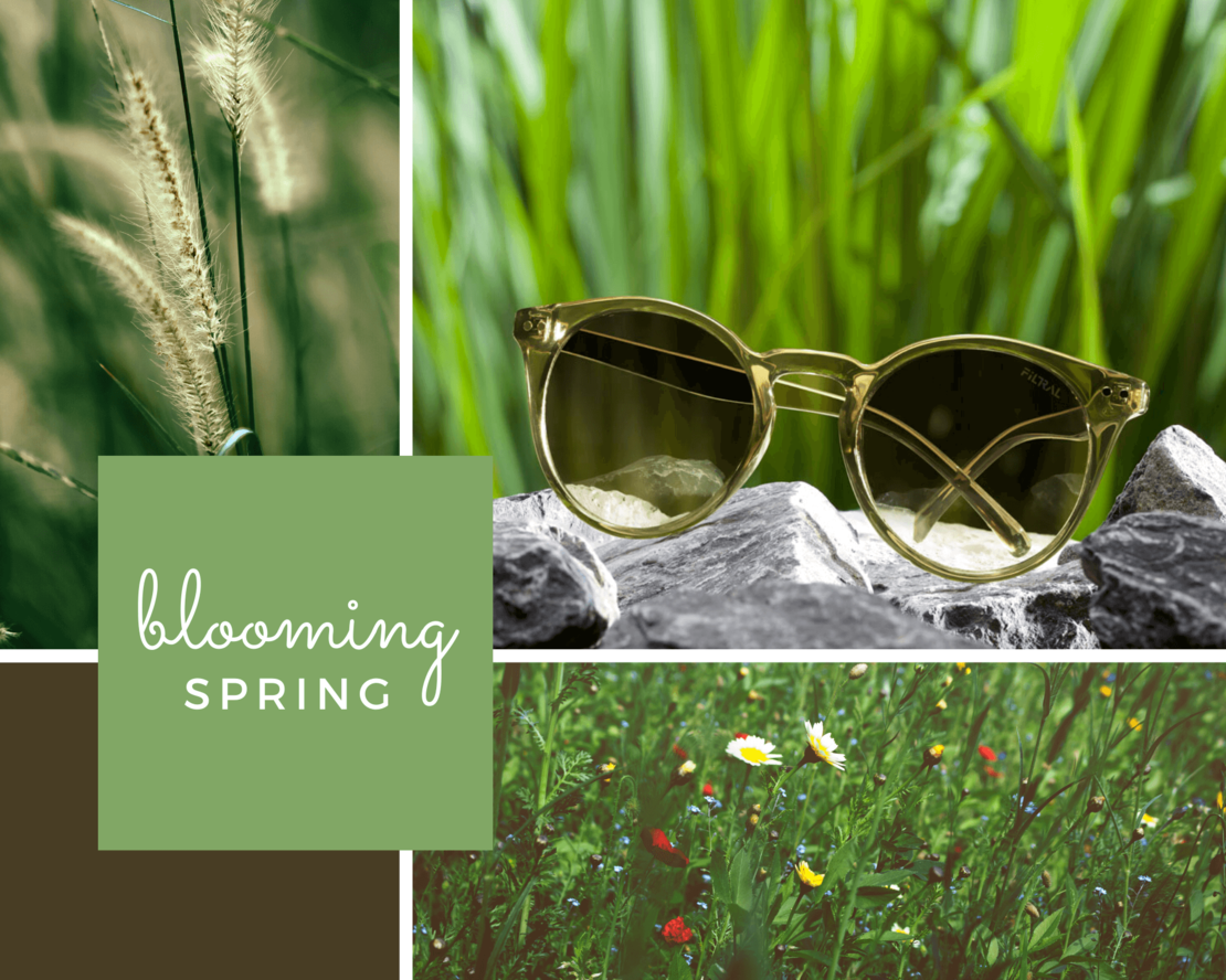 sunglasses inspiration spring F3073921