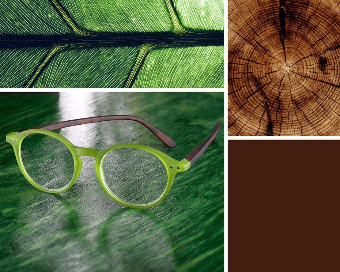 reading glasses inspiration rio green-havanna