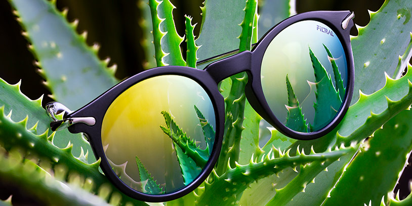 Bild, Filtral Green Line Sonnenbrille