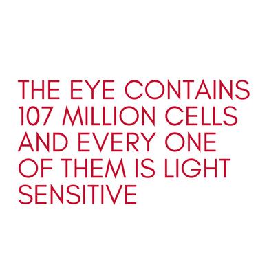 Graphic, text element, sunglasses lookbook