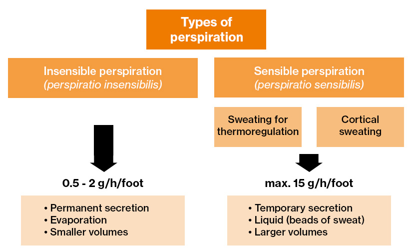 Diagram showing the different kinds of perspiration