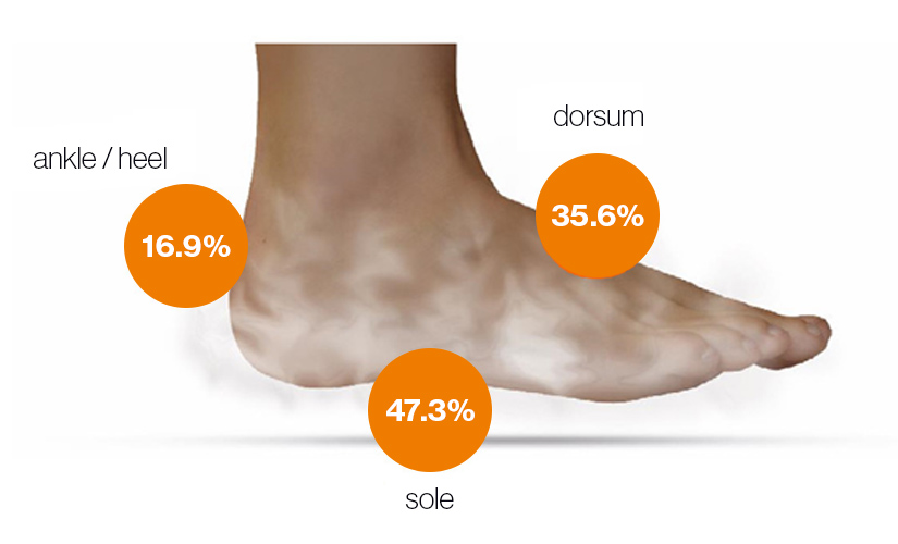 The distribution of sweat glands on the foot