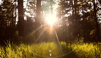 How can UV rays damage your eyes?